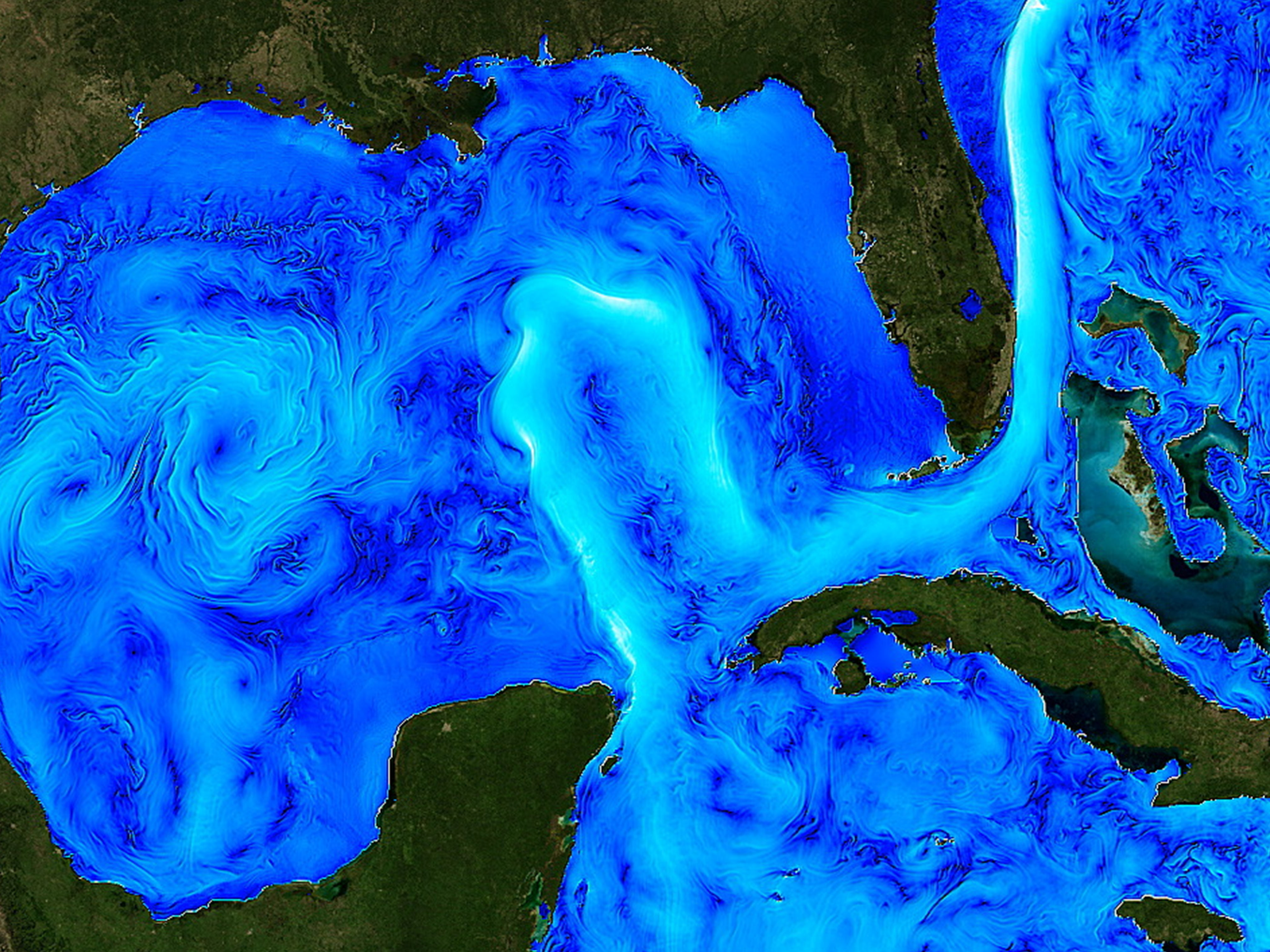 RUCOOL part of team awarded $10.3 million to advance understanding of Gulf of Mexico Loop Current