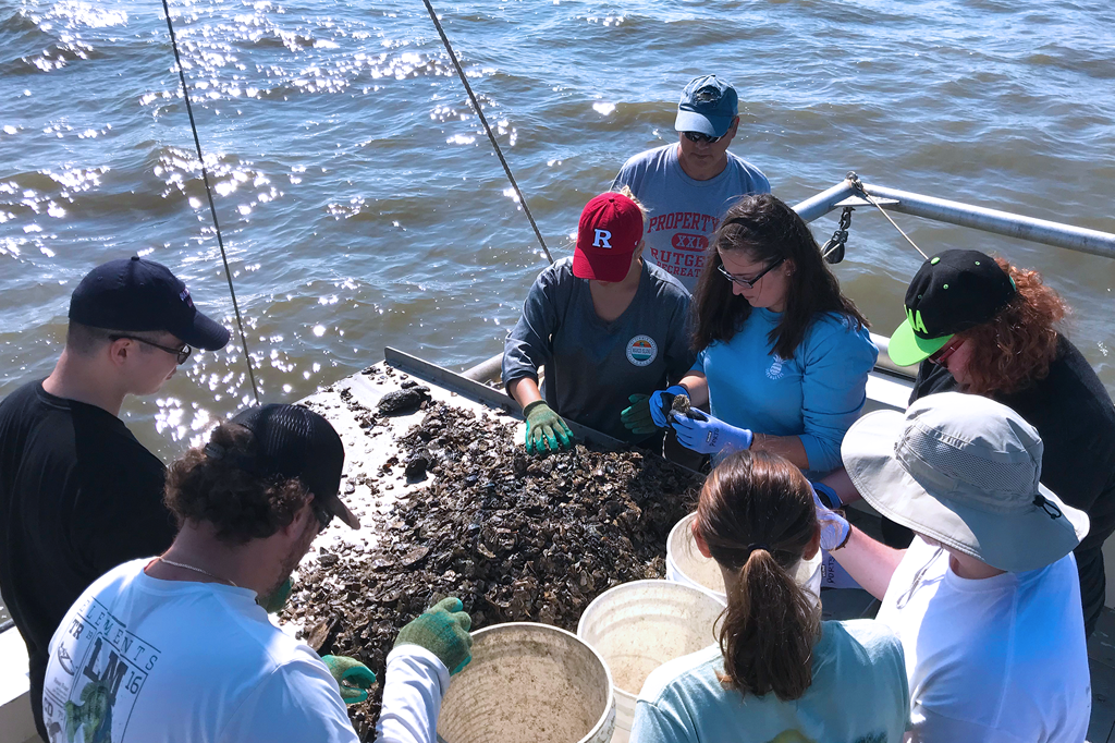 Undergraduate Marine Science Program