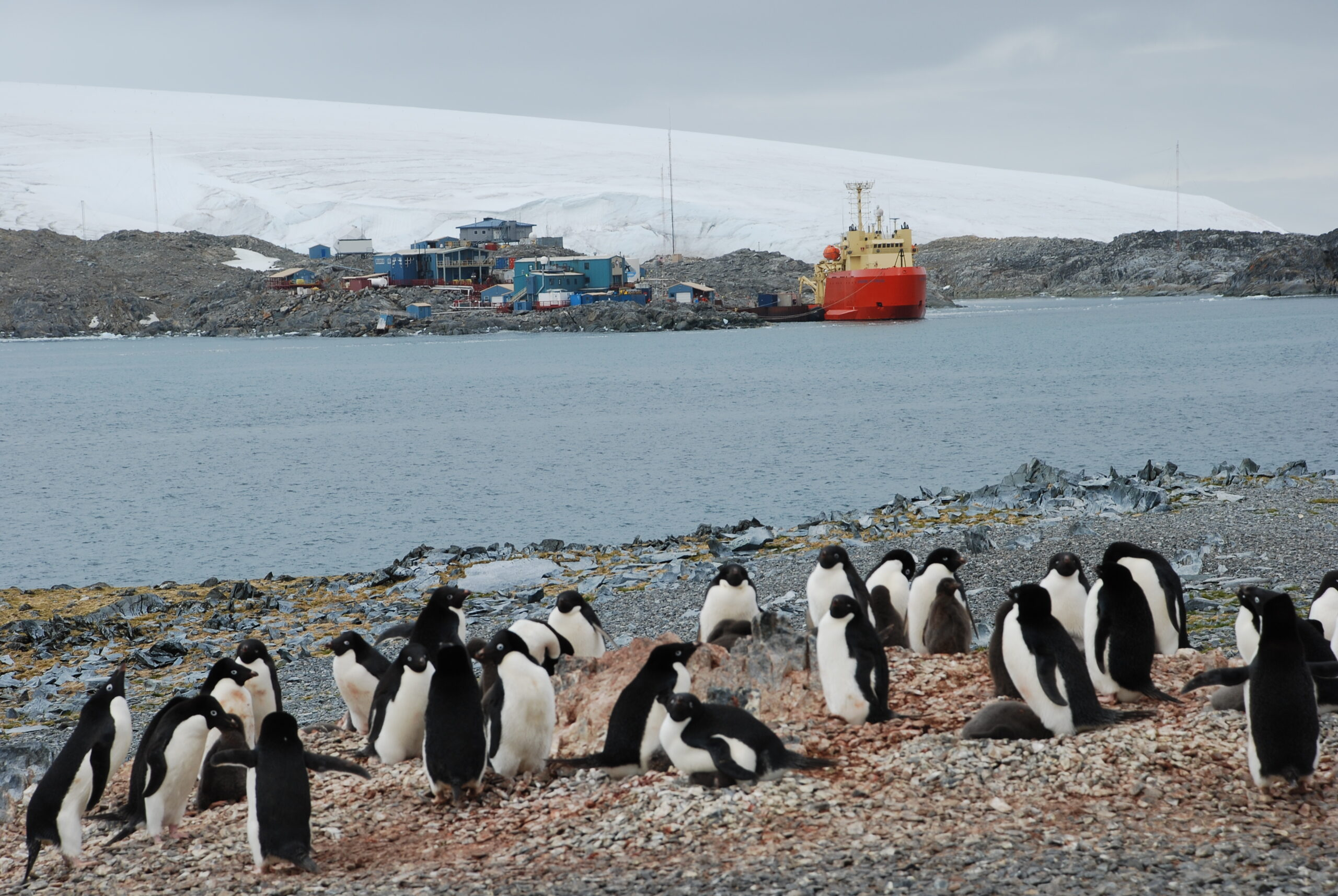 The Future of Antarctica and the Southern Ocean that surrounds it