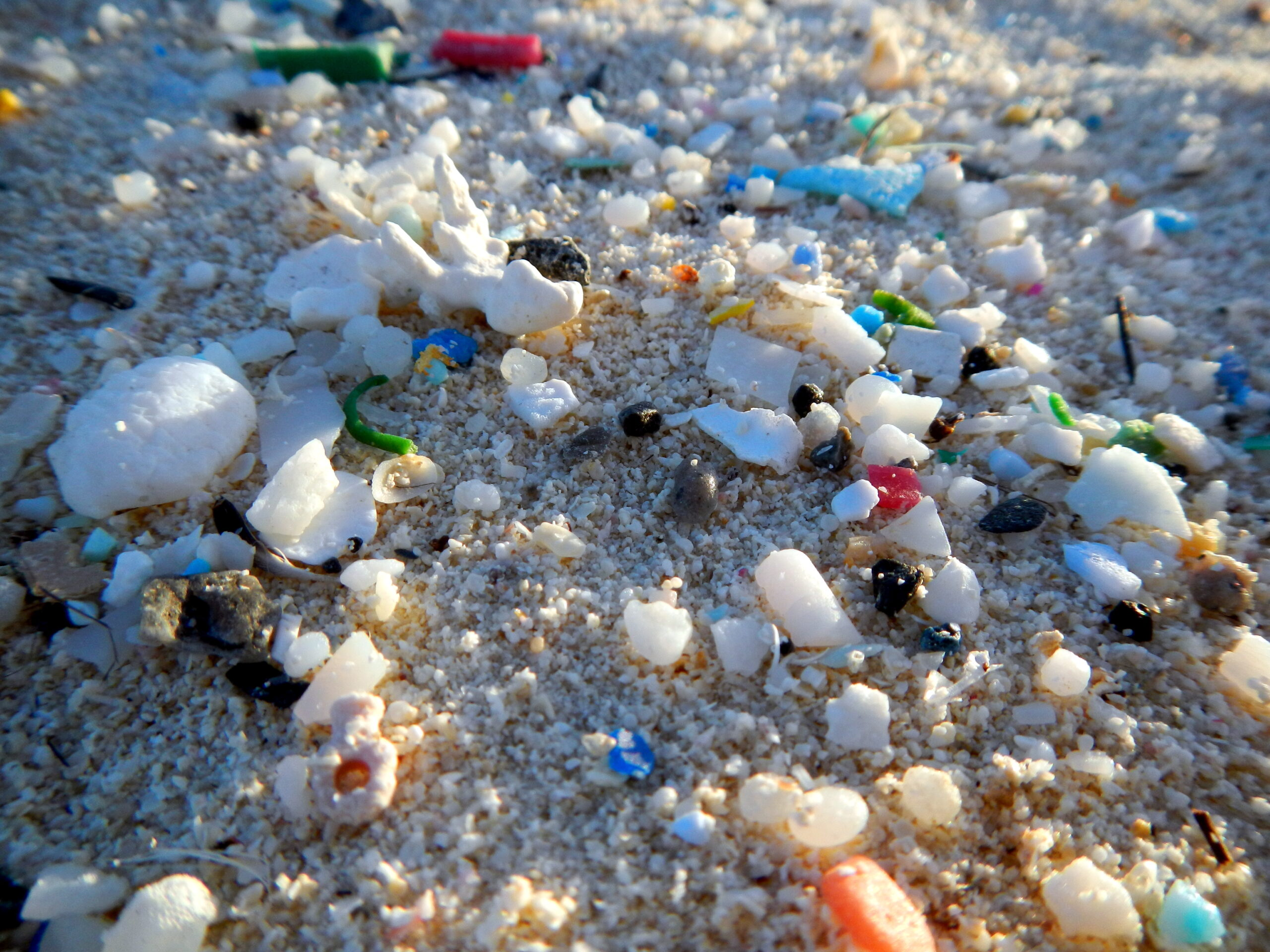 Microplastic Sizes in Hudson-Raritan Estuary and Coastal Ocean Revealed